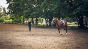 Formation de jeunes chevaux devant la course Photo libre de droits