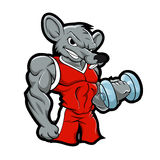 Formation de musculation de rat de gymnase illustration libre de droits