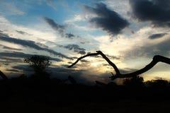 Formation de nuage au début du coucher du soleil Photographie stock libre de droits
