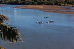 Formation de Paddlers de canoë-kayak de rivière photos libres de droits
