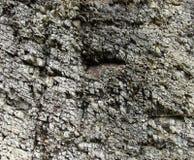 Formation de roche brutale dans la pierre grise Image libre de droits