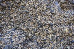 Formation de roche conglomérée images stock
