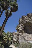 Formation de roche déchiquetée photo stock