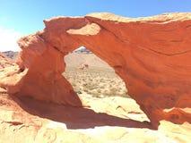 Formation de roche déchiquetée fraîche et féroce Photos stock