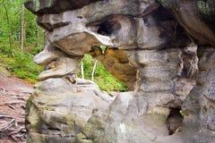 Formation de roche dans la forêt verte images libres de droits