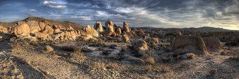 Formation de roche de stationnement national d'arbre de Joshua panoramique Photographie stock