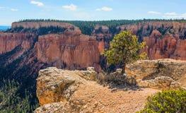Formation de roche merveilleuse dans Bryce Canyon National Park L'Utah, USA Image libre de droits