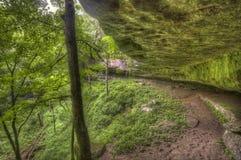 Formation de roche moussue, forêt du Kentucky Photo stock