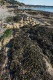 Formation de roche de Shoreline Photographie stock
