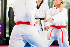 Formation de sport d'arts martiaux dans le gymnase photos stock