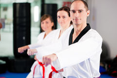Formation de sport d'arts martiaux en gymnastique image libre de droits