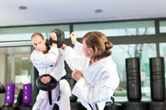 Formation de sport d'arts martiaux en gymnastique photographie stock libre de droits