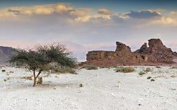 Formation géologique en stationnement de Timna, Israël Images libres de droits