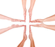 Formation of human hands Stock Images