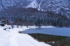 Formation of ice on a lake Bohinj in Slovenian Alps Stock Images