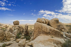 Formation Joshua Tree Stock Photo