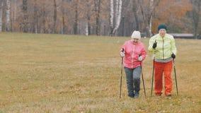 Formation pour des femmes agées en parc d'automne - nordic marchant parmi le parc d'automne Image libre de droits