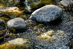 Stream river stones royalty free stock photo