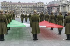 Formation of soldiers with the Hungarian flag during the 15 March parade, Budapest, Hungary. royalty free stock image