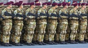 Formation of soldiers at the review. stock photo