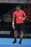 Formation sur Grigor Dimitrov Photo stock