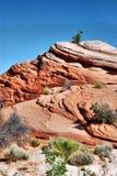 Formations colorées de roche et de grès en parc national de récif de capitol image libre de droits