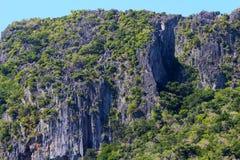 Formations de chaux et cocotiers, île de Sawa-i-Lau, Fidji photos libres de droits