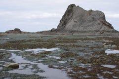 Formations de piscines et de roche de marée à marée basse images stock