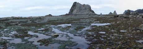 Formations de piscines et de roche de mar?e ? mar?e basse image libre de droits
