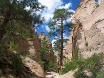 """Formations de roche """"de falaise blanche """"de porte-malheur de Kashe Katuwe en canyon de fente photographie stock libre de droits"""