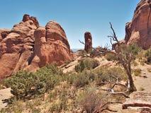 Formations de roche au parc national de voûtes en Utah Images libres de droits