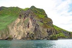 Formations de roche avec des sites de reproduction pour les oiseaux marins, Islande image stock