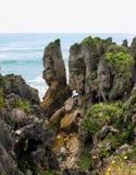 Formations de roche de chaux au vent répugnant de cap, Nouvelle-Zélande photos stock