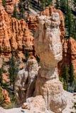 Formations de roche colorées de porte-malheur en Bryce Canyon National Park, U images stock