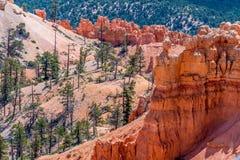 Formations de roche colorées de porte-malheur en Bryce Canyon National Park, U photo stock
