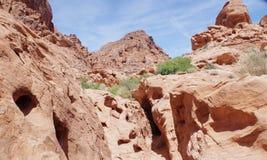 Formations de roche de désert, vallée de parc d'état du feu, Nevada, Etats-Unis image stock