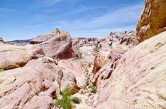 Formations de roche de désert, vallée de parc d'état du feu, Nevada, Etats-Unis photos stock