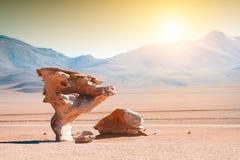 """Formations de roche """"d'arbre en pierre """"Arbol de Piedra sur Altiplano, Bolivie image stock"""