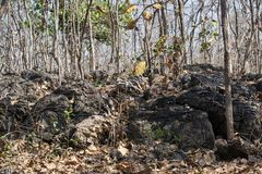 Formations de roche dans Madhya Pradesh images stock