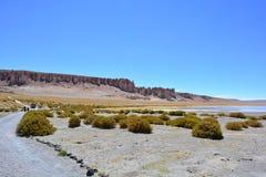 Formations de roche de Salar de Tara, dans le désert d'Atacama, la Bolivie Image libre de droits