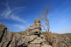 Formations de roche de Tsingy dans Ankarana, Madagascar Image libre de droits