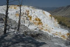 Formations de roche de geyser de terrasse de Mammoth Hot Springs, parc national de Yellowstone images libres de droits