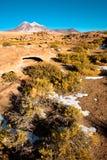 Formations de roche de lave s?che, avec Cerro Miniques ? l'arri?re-plan dans l'Altiplano, d?sert d'Atacama photos stock