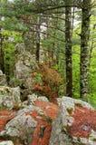 Formations de roche le long de butte photo libre de droits