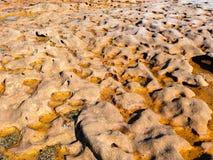 Formations de roche oranges douces sur une plage en parc national royal à Sydney photographie stock libre de droits