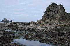 Formations de roche sur la plage de Rialto en parc national olympique photo libre de droits