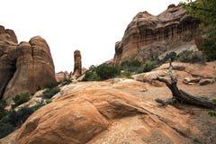 Formations de roche, voûtes parc national, Moab Utah Image stock