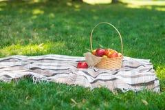 Formato largo de la tela escocesa de la comida campestre de las manzanas de la cesta de la fruta de la hierba verde de verano del imágenes de archivo libres de regalías