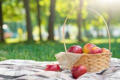 Formato lungo del plaid di picnic delle mele del canestro della frutta dell'erba verde di ora legale di resto del fondo di proget immagine stock