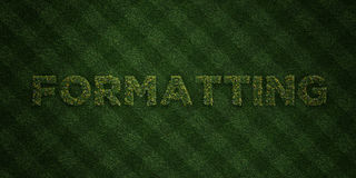 FORMATTING - fresh Grass letters with flowers and dandelions - 3D rendered royalty free stock image Stock Images